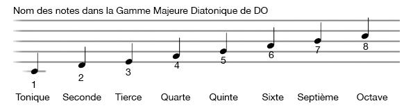 apprendre-la-guitare-debutant_Notes de la Gamme Diatonique Majeure